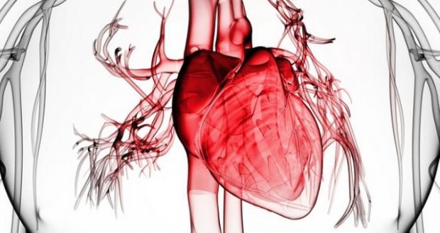 Tratamento experimental aumenta expectativa de vida de pacientes com insuficiência cardíaca