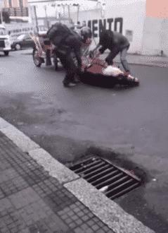 O animal que puxava o veículo não aguentou subir o morro e caiu, ficando por alguns minutos estendido no chão