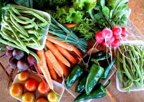 Montes Claros - Município adquire alimentos de pequenos agricultores para a merenda escolar