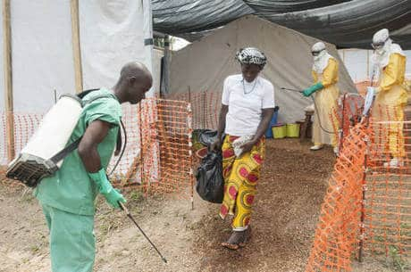 Saúde - Controle do ebola requer ações diferentes em cada país, diz especialista