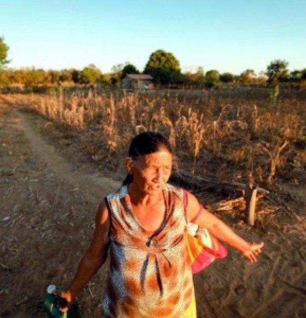 Quase 100% dos agricultores de Itacarambi terão que receber ajuda