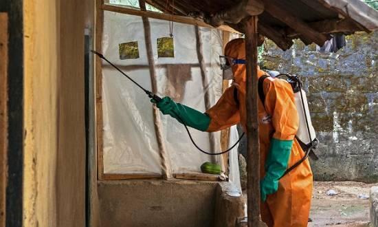 Primeiro caso de contágio de paciente pelo vírus ebola fora da África foi confirmado em Madri, na Espanha