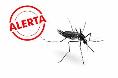 Brasil - Minas Gerais é o terceiro estado a registrar casos de transmissão da febre chikungunya