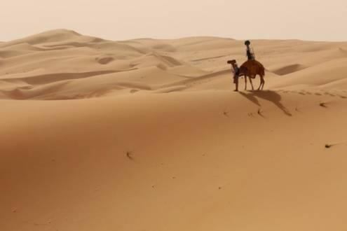 Com a ajuda do animal, foram capturadas imagens de fazendas e tendas de beduínos.Com a ajuda do animal, foram capturadas imagens de fazendas e tendas de beduínos.