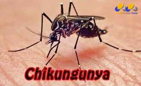MG - Estado investiga 28 casos de febre chikungunya em Minas Gerais