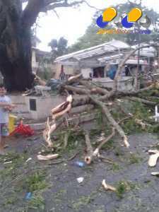 MG - Temporal de chuva provoca estragos na cidade de Resende Costa