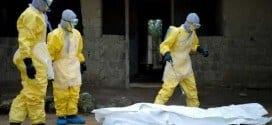 Perigoso, o vírus do ebola ataca principalmente quem trabalha na área de medicina tratando os doentes.