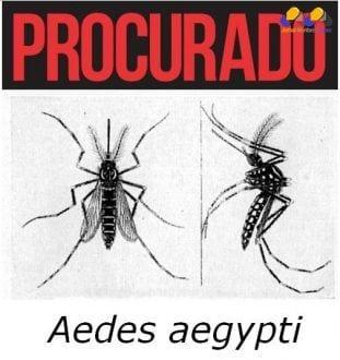 """Montes Claros terá nove dias de """"guerra"""" ao Aedes aegypti"""