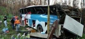 MG - Ônibus cai em ribanceira e deixa 5 mortos e 24 feridos