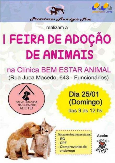 Montes  Claros - Feira de adoção de animais