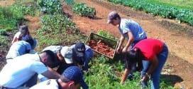 Cursos – Inscrições abertas para curso Técnico em Agropecuária