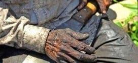 Fiscais resgatam do trabalho escravo quase 50 mil em 20 anos