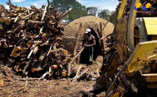 MG - Minas Gerais lidera ranking de trabalho escravo em 2014