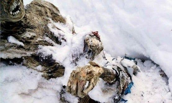 As múmias foram encontradas na última quinta-feira (5) Foto: Reprodução/Facebook