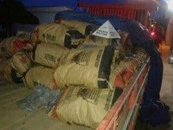 Polícia de Meio Ambiente prende caminhoneiro que transportava carvão com selo falsificado