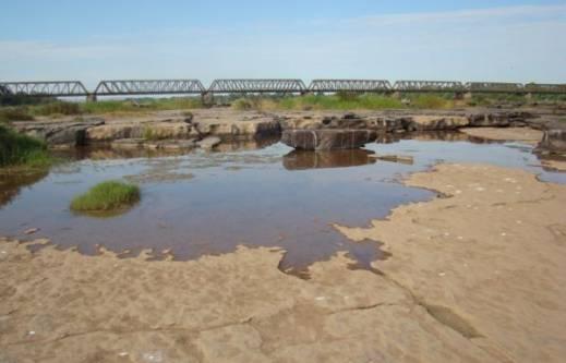 MG - Fórum Mineiro de Comitês de Bacias Hidrográficas discute escassez hídrica e solução para o problema