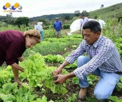 Apoio do Estado ao agricultor familiar inclui financiamentos para safra e incentivos às feiras livres