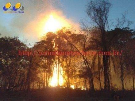 Montes Claros – Bombeiros registram nove incêndios em vegetação no último final de semana