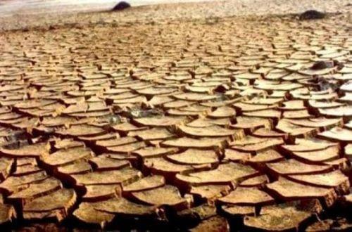 Montes Claros - Município de Montes Claros decreta situação de emergência pela falta de chuvas