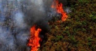 MG - Governador libera recursos para combate a incêndios em Minas Gerais
