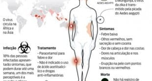 Zika vírus atingiu ao menos 500 mil pessoas no Brasil em um ano