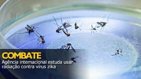Saúde - Agência internacional estuda usar radiação contra vírus zika