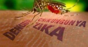 MG - Araxá investiga primeiro caso suspeito de Chikungunya