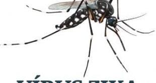 MG - Caso de zika vírus em recém-nascido é descartado em Curvelo
