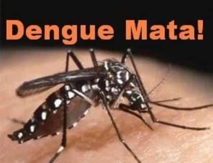 MG - Dengue já matou 19 em Minas Gerais