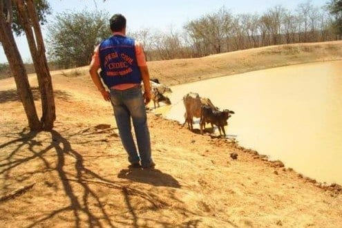 MG - 94 cidades de Minas Gerais já decreataram situação de emergência por causa da seca
