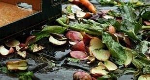 A União Europeia (UE) registra anualmente perda de 89 milhões de toneladas de alimentos, o que equivale a 179 quilos de comida por habitante perdidos a cada ano, segundo relatório do governo português sobre o desperdício alimentar