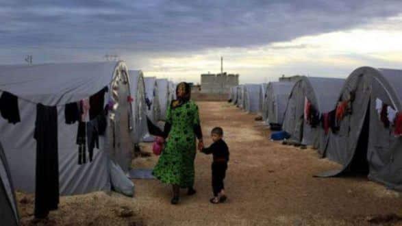 Crise gerada por número de refugiados sírios tem sido um fator de expansão da leishmaniose, nota estudo