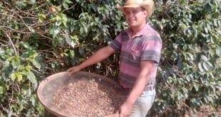 Rodrigo Dias de Pádua quer aprender logo as novas técnicas no cultivo do café