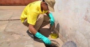 Montes Claros -Período do ano requer maiores cuidados no combate ao Aedes aegypti