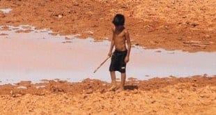 Nordeste do Brasil enfrenta maior seca em 100 anos