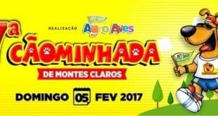 Montes Claros - 7° edição da 'Cãominhada' será realizada em Montes Claros