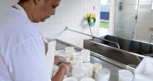 Denize e o marido produzem cerca de 100 queijos por dia, que são vendidos em BH, Confins e Lagoa Santa