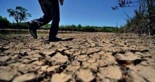 Norte de Minas - Governo federal reconhece emergência por causa da seca em 5 cidades do Norte de Minas