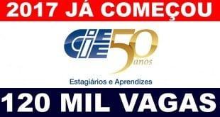 Emprego - Mercado para estágio está em expansão em Minas Gerais