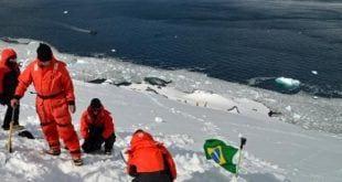 Pesquisadores do MycoAntar, projeto voltado para explorar o continente gelado da Antártica
