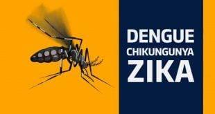 Montes Claros - Sugerida campanha de conscientização para combater mosquito Aedes aegypti