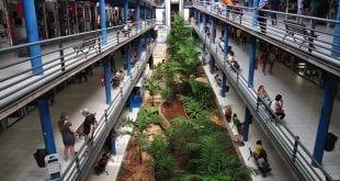 Montes Claros - Prevmoc faz recadastramento dos lojistas do Shopping Popular