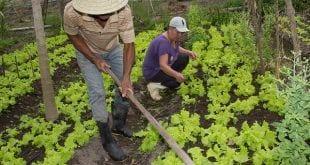 Norte de Minas - Codevasf equipa comunidades rurais do Norte de Minas para superar efeitos da estiagem