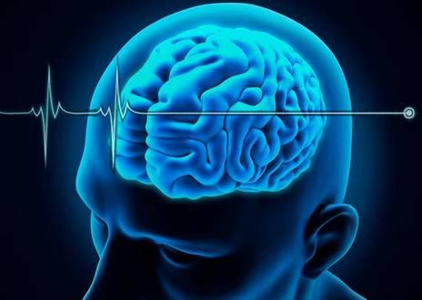 Saúde - Morte encefálica tem novos critérios
