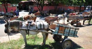 Prefeitura de Montes Claros realiza reunião com carroceiros para acabar com o descarte irregular de entulho