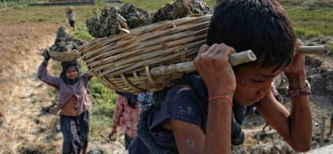 Trabalho Infantil: em 6 anos, 15.675 menores foram vítimas de acidentes de trabalho