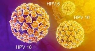 Vírus HPV tem relação com aumento de casos na cabeça e no pescoço