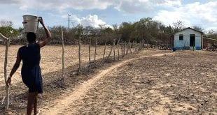 Agronegócio no Norte de Minas pena com 70% de rios secos