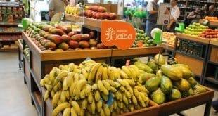 Fruit Connections em Janaúba