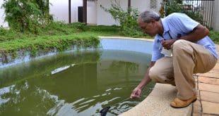 Prefeitura de Montes Claros intensifica o combate à dengue